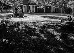 Evening Shadows (3 of 3) (+Pattycake+) Tags: shadows lumixdmcgm1 blackandwhite street people monochrome norwich moon bw evening uk scenes