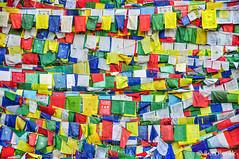 Rewalsar, India (Ben Perek Photography) Tags: asia india temple hindu buddhism sikh lake holy pema lotus piligrimage piligrims foot dalailama dalai lama himalayas tso nagar panchayat mandi himachal pradesh backpacker travel journey culture religious rewalsar monk monks monkey