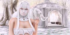 2352 = Glam Affair - Taketomi (Mandy Kharis) Tags: taketomi glamaffair