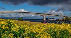Skye Bridge (MC Snapper78) Tags: scotland nikond3300 landscape lochalsh skyebridge architecture isleofskye marilynconnor