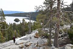 DEH_2603 (sobca) Tags: alpine california laketahoe laketahoebasinnationalforestlands nevada sierramountains emeraldbay