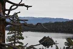 DEH_2605 (sobca) Tags: alpine california laketahoe laketahoebasinnationalforestlands nevada sierramountains emeraldbay