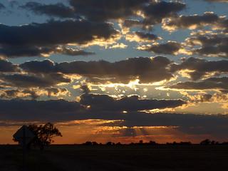 sunrise on the road to Lark Quarry (2)