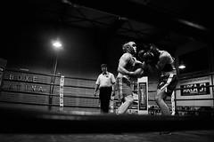 32855 - Uppercut (Diego Rosato) Tags: boxe pugilato boxing boxelatina nikon d700 incontro match ring rawtherapee tamron 2470mm bianconero blackwhite uppercut montante pugno punch