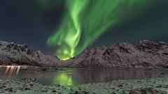 Aurora Borealis, Lofoten 2018 (Stefan Giese) Tags: nikon d750 norwegen norway lofoten tamron nordlicht polarlich auroraborealis northernlight green tamron1530mmf28 1530 reflection sildpollnes
