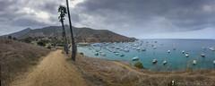 Green Seas (ihikesandiego) Tags: two harbors catalina island green seas trans trail