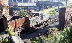Westoe15a660 (Ernies Railway Archive) Tags: hartoncoalcompany westoe ncb southshields