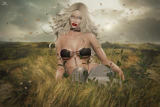 WildRozie~SummerGrass...