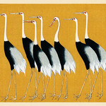 A traditional portrait of a flock of beautiful Japanese red crown crane by Ogata Korin (1658-1716). Digitally enhanced from our own antique plate. thumbnail