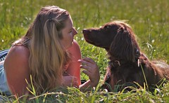 ein Team (jueheu) Tags: shooting portrait team hund dog deutscherlanghaar jagdhund dame frau women lady wiese grün green natur nature photoshooting shoot canon canonphotographie fotografie 2 summer sommer