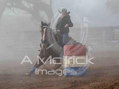 _OVI0170 (A.McIlrick.Images) Tags:
