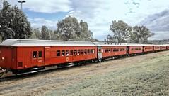 Queensland Rail Heritage carriages (Lance # Australian photographer) Tags: clerestorycoachaustralianstock queensland qldblv447 theworkshopsrailmuseum carriage queenslandrail guardvan train railroad railway northipswich