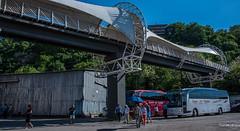 2018 - Bulgaria - Svistov (Ted's photos - Returns 16 August) Tags: 2018 bulgaria cropped nikon nikond750 nikonfx tedmcgrath tedsphotos vignetting svistov svistovbulgaria blue bluesky people peopleandpaths pathsandpeople umbrella bus buses redrule red