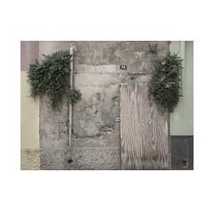 Nº 32  La Atmella de Mar.   ( Cataluña ) (José Luis Cosme Giral) Tags: minimalism urbannature downpipes plants nº32 wall textures olympus laatmellademar cataluña