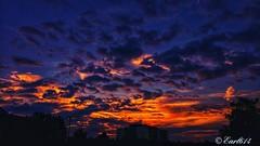 Sunrise from the office! Happy Friday Eve!! (Edale614) Tags: sunrise sunsetsaroundtheworld goodmorningworld goodmorning naturelovers nature photography photo photooftheday picoftheday explore wanderlust aroundtheworld columbus ohio earl614 sky