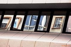Ventanas (7826) (carpomares) Tags: ventana window reflections reflejos