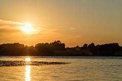 Sunset shadows (NaturaRAW) Tags: 2018 fujifilmfujinonxf14xtcwr fujifilmfujinonxf50140mmf28rlmoiswr fujifilmxe3 landscape nature sun sunset ellenösjön färgelanda landskap natur solnedgång ellenö västragötalandslän sverige se