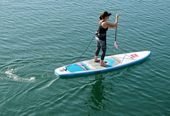 Early Morning Paddle (Bennilover) Tags: paddleboarding paddle danapoint california july beach ocean pacific sup sharks lastyearinmay shark woman athlete paddling blue