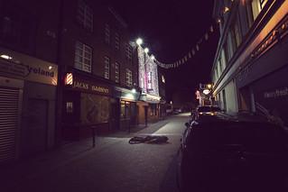 107/365 - night life