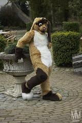 _DSC0024 (MM Furry Photo) Tags: bunny rabbit fursuit fursuiting portrait critterfactory pantoffel