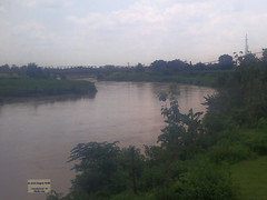 Indonesia-Java East River 20171216_115247 LG (CanadaGood) Tags: asia asean seasia indonesia indonesian java javanese eastjava jawatimur tulungagung river tree canadagood 2017 thisdecade color colour cameraphone