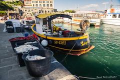 Lupetto (patoche21) Tags: europe italie ligurie marin paysage portovenere bateau filetdepãªche port portdepãªche pãªche patrickbouchenard