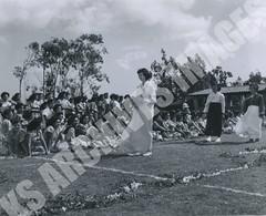 920- 5556 (Kamehameha Schools Archives) Tags: kamehameha archives ksg ksb ks oahu kapalama luryier pop diamond 1955 1956 lei day