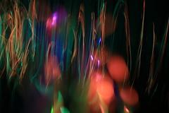 Incumbent colonies  #lightpainting #longexposure #lightart #lightpaintingblog #lpwalliance #lightjunkies #laserart #uv (Hugo Baptista) Tags: uv longexposure lightjunkies laserart lightpaintingblog lpwalliance lightpainting lightart
