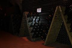 DANIELE & d'Araprì (Sparkling Wines of Puglia) Tags: cantinadaraprì cantina cave spumante metodoclassico sansevero puglia pupitre cataste bottiglie