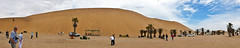 photo - Dune 7, Namibia (Jassy-50) Tags: photo dune7 walvisbay namibia sanddune palm tree sand panorama namibdesert oasis