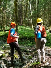 20180725-FS-Tongass-BM-003 (Tongass National Forest) Tags: vallenar ketchikan restoration younggrowth
