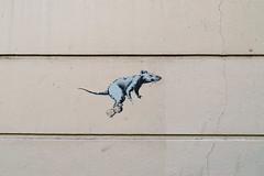 Banksy (lepublicnme) Tags: france paris june 2018 graffiti stencil pochoir streetart rat champagne
