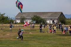 Catch The Bear (Clayton Perry Photoworks) Tags: richmond steveston vancouver bc canada summer explorebc explorecanada garrypointpark kitefestival kites people