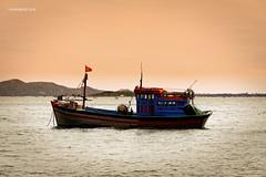 Vietnamese Fishing Boat 21 (rokobilbo) Tags: vietnam river fishingboat fishing sky color tradition