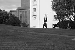 Leben in Reykjavik (Agentur snapshot-photography) Tags: island iceland isländisch isl reykjavik hauptstadt reykjavíkurborg aussenaufnahme 011600 aussen aussenansicht outdoor bauwerke freizeit leisure recreational freizeitaktivitäten freizeitgestaltung recreationalactivities sport gesellschaft ferien ferienzeit effekt schwarzweiss blackwhite bw sw kurios humor ironie ironisch komisch lustig witz witzig landschaft landscape landschaften landschaftsaufnahme stadtlandschaft stadt städte stadtansichten urbanlandscape personen bevölkerung schnappschuss 012300 momentaufnahme alltag lebenswelten strassenszene lebensgefühl streetphotography