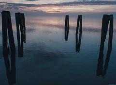 trasimeno_lago_04 (Marco Tuteri) Tags: lago trasimeno