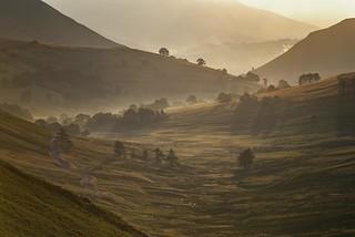 morning light in newlands valley