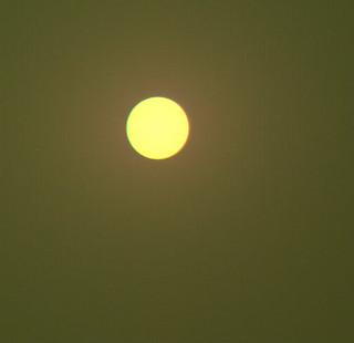 Lucky Sun Colors