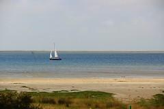 Billriff (ihnesdoepkens) Tags: nordseeinsel küste billriff travel ruhe ozean sea malerisch meer segelboot juist