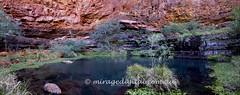 Karijini_Dales gorge_Circular pool panorama