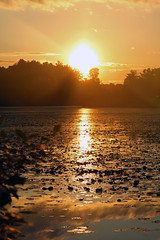 Magical DW Field Sunset (A_Renee_88) Tags: sunset sky magical nature colors orange blue gray lily pads ponds reflections dw field park brockton massachusetts resevoir state