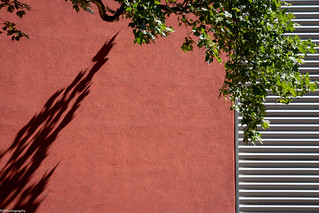 red.shadow