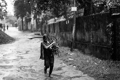 Fuel your soul. (A. adnan) Tags: rain neighbour chittagong bangladesh young woman fuel cooking lifestyle slum
