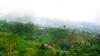 Munduk Hills (code_martial) Tags: d750 85mmf18g bali indonesia munduk theview plataran panorama