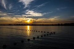 Another sunset at Petrie Island (runningman1958) Tags: petrieisland sunset nature d7200 nikond7200 nikon