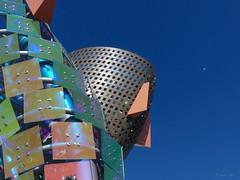 Sky Leap (the mindful fox) Tags: tsawwassenmills tsawwassen tsawwassenfirstnation sculpture salmon seagull art