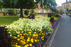 Bakewell Gardens.   July 2018 (dave_attrill) Tags: bakewell gardens flowers lawn town centre peakdistrict derbyshire july 2018 flowerbed pathway