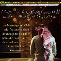 A-son-could-not-do-enough-for-his-father,-unless-he-found-him-as-a-slave-and-purchased-him-to-set-him-free (aamirnehal) Tags: quran hadees hadith seerat prophet jesus moses book aamir nehal love peace quotes allah muhammad islam zakat hajj flower gift sin virtue punish punishment teaching brotherhood parents respect equality knowledge verse day judgement muslim majah dawud iman deen about son daughter brother sister hadithabout quranabout islamabout riba toheed namaz roza islamic sayings dua supplications invoke tooba forgive forgiveness mother father pray prayer tableegh jihad recite scholar bukhari tirmadhi