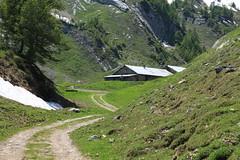 Petit Pré (bulbocode909) Tags: valais suisse ovronnaz petitpré montagnes nature alpages chemins chalets arbres forêts mélèzes névés neige printemps vert