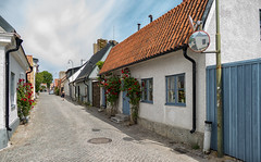 Visby, city of roses, Gotland (Gösta Knochenhauer) Tags: 2018 june panasonic lumix fz1000 dmcfz1000 visby gotland sverige sweden schweden suède svezia suecia street scene p9160107nik p9160107 nik hanseatic town unesco world heritage site